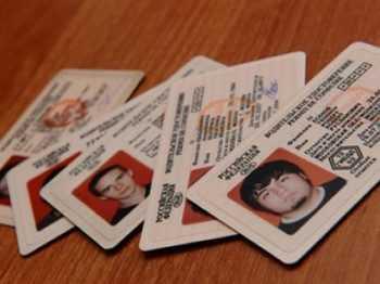 Пять водительских прав
