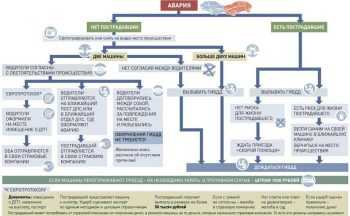 Блок-схема действий при ДТП