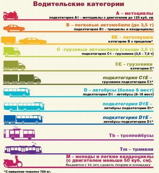 водительские категории